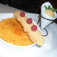 Creme Brulee - Joma - Wien