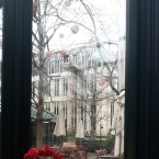 Window with a view :) - Clementine im Glashaus - Wien