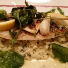 gegrilltes Branzino Filet mit Minze-Risotto