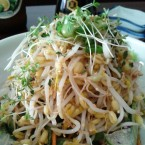 Gold Rock - Moyashi-Salat (EUR 4,90) - Gold Rock - Wien